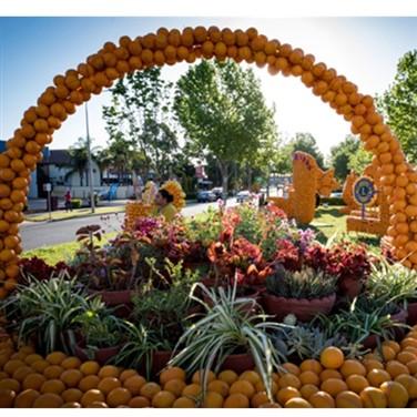 Griffith Garden Festival