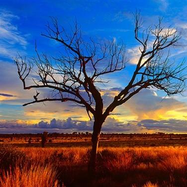 Red Centre & Alice Springs